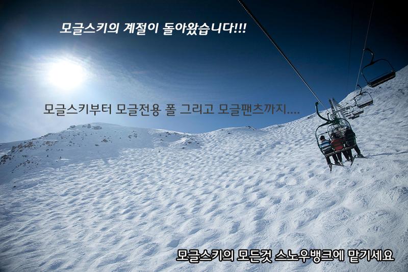 Mogul-Skis.jpg